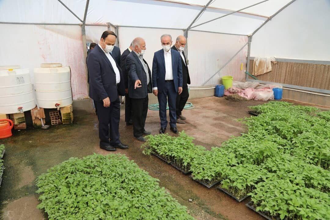 خبرنگاران سرمایه گذاری 18 هزار میلیارد ریالی در گلخانه های منطقه آزاد ارس